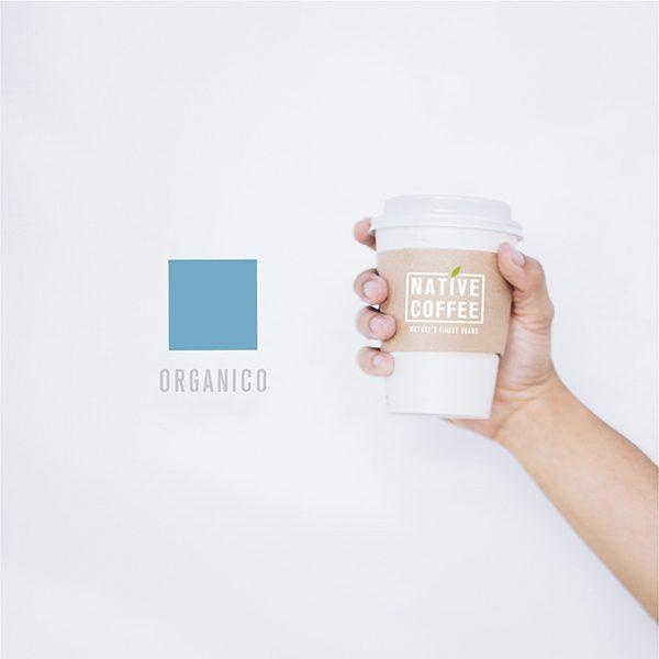 Native Organico Luxury Coffee Beans 1KG 2