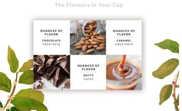 Kokebi Central Blend 100% Arabica Coffee Beans 1KG 1
